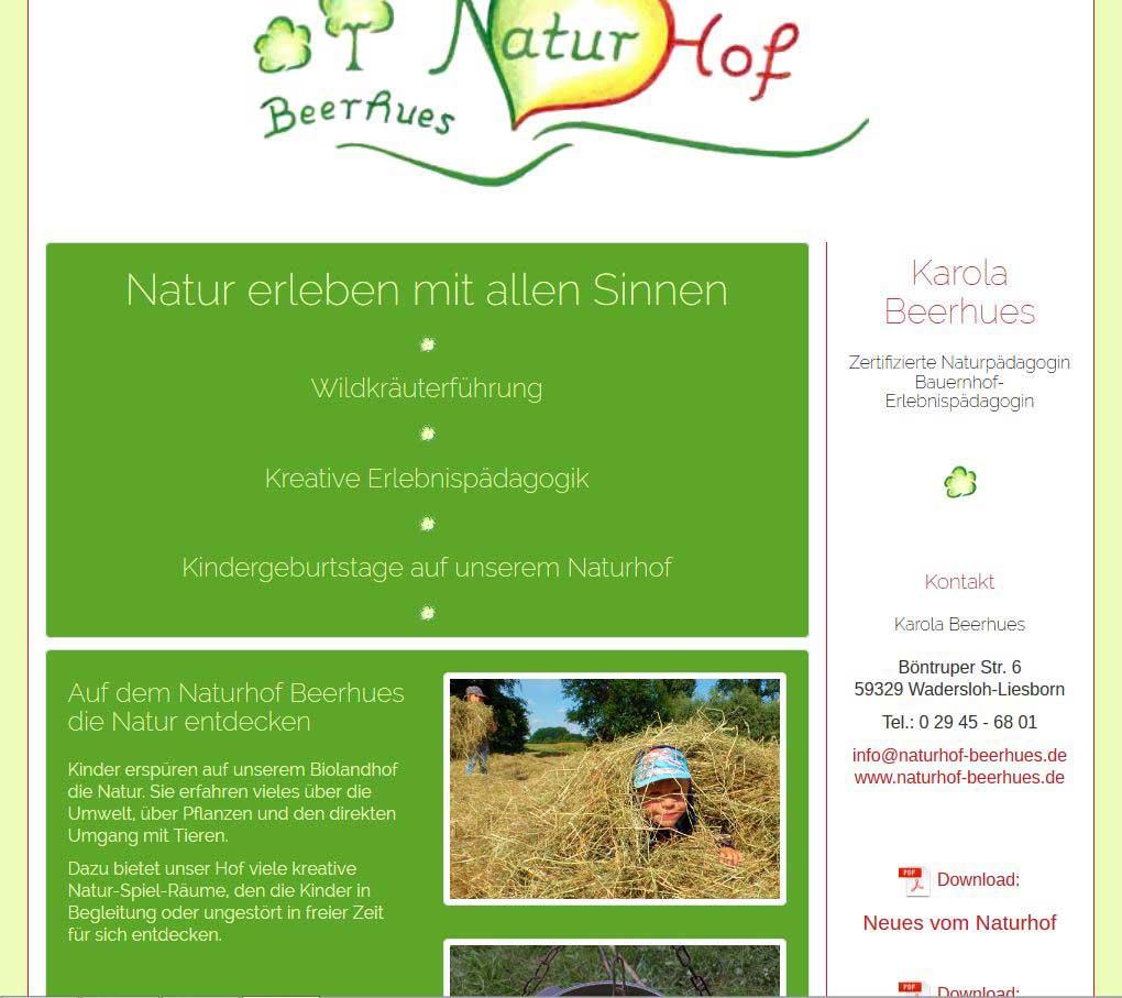 Die Ganz Kleine Homepage