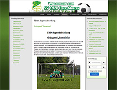 Joomla Webdesign Hompage Update für Sportverein